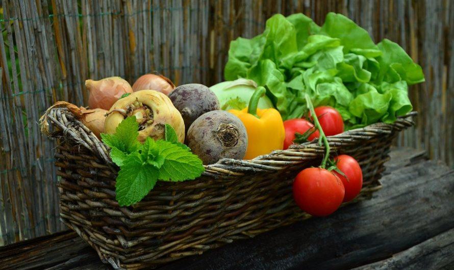 Top 20 Des aliments sans sucre (ou presque)